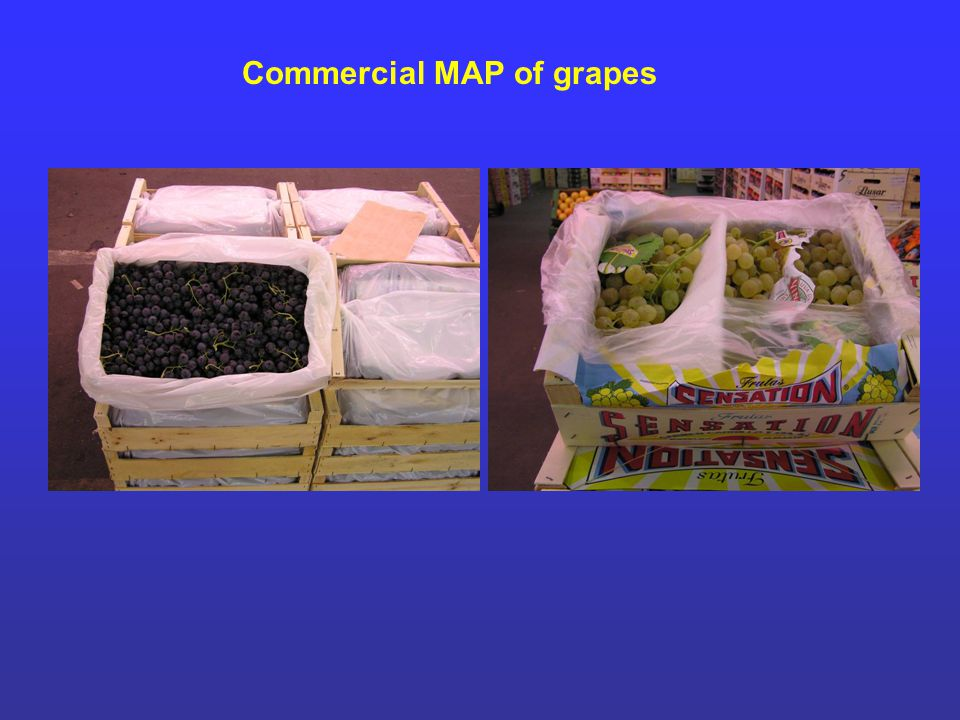 Commercial MAP of grapes
