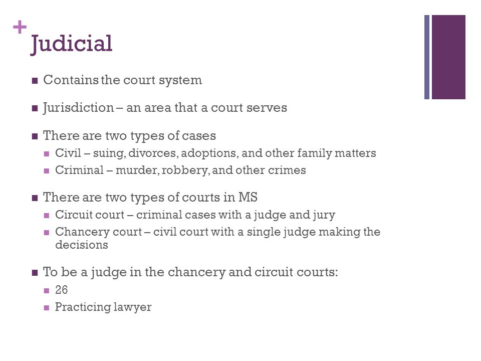 + Judicial Contains the court system Jurisdiction – an area that a court serves There are two types of cases Civil – suing, divorces, adoptions, and o