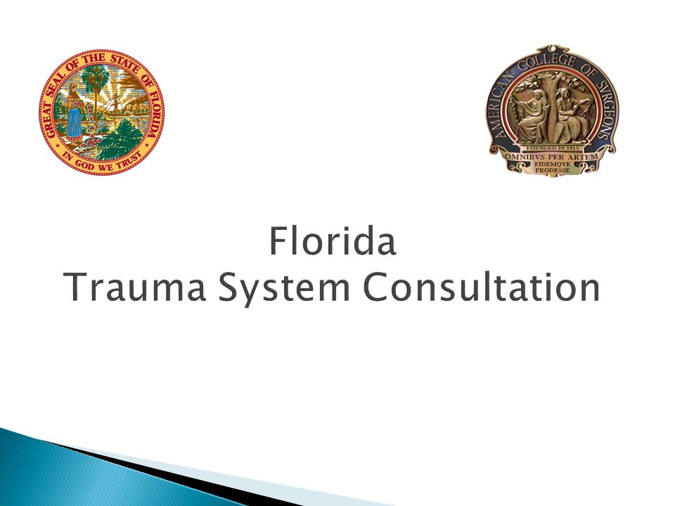 System Leadership  Appoint a new Florida Trauma System Advisory Council (FTSAC) to provide input to policy development for the trauma system.