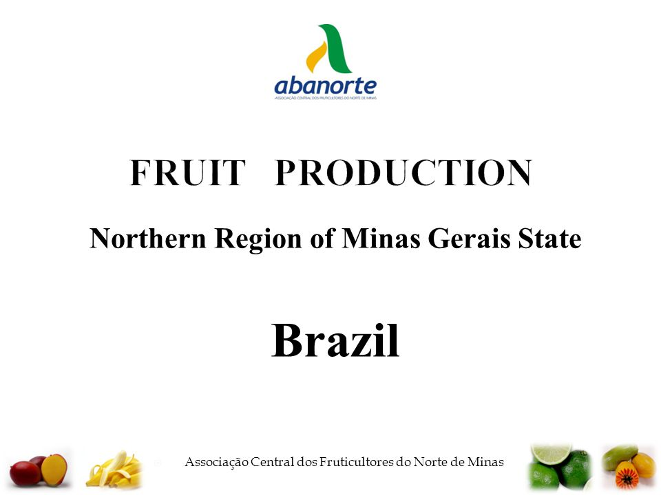  Associação Central dos Fruticultores do Norte de Minas FRUIT PRODUCTION Northern Region of Minas Gerais State Brazil