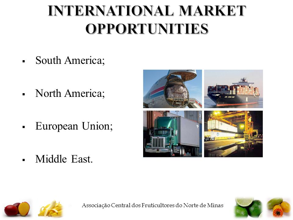  Associação Central dos Fruticultores do Norte de Minas INTERNATIONAL MARKET OPPORTUNITIES  South America;  North America;  European Union;  Middle East.
