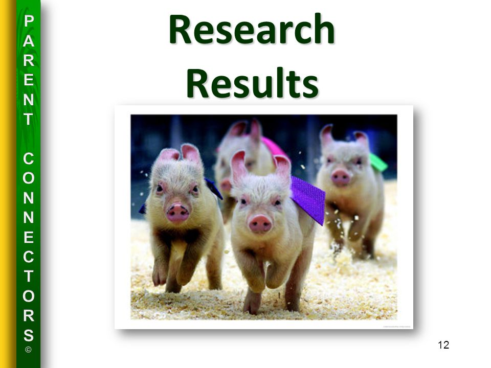 12 Research Results