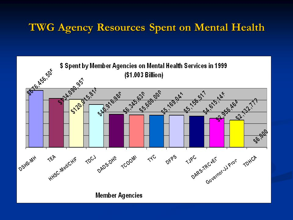 TWG Agency Resources Spent on Mental Health
