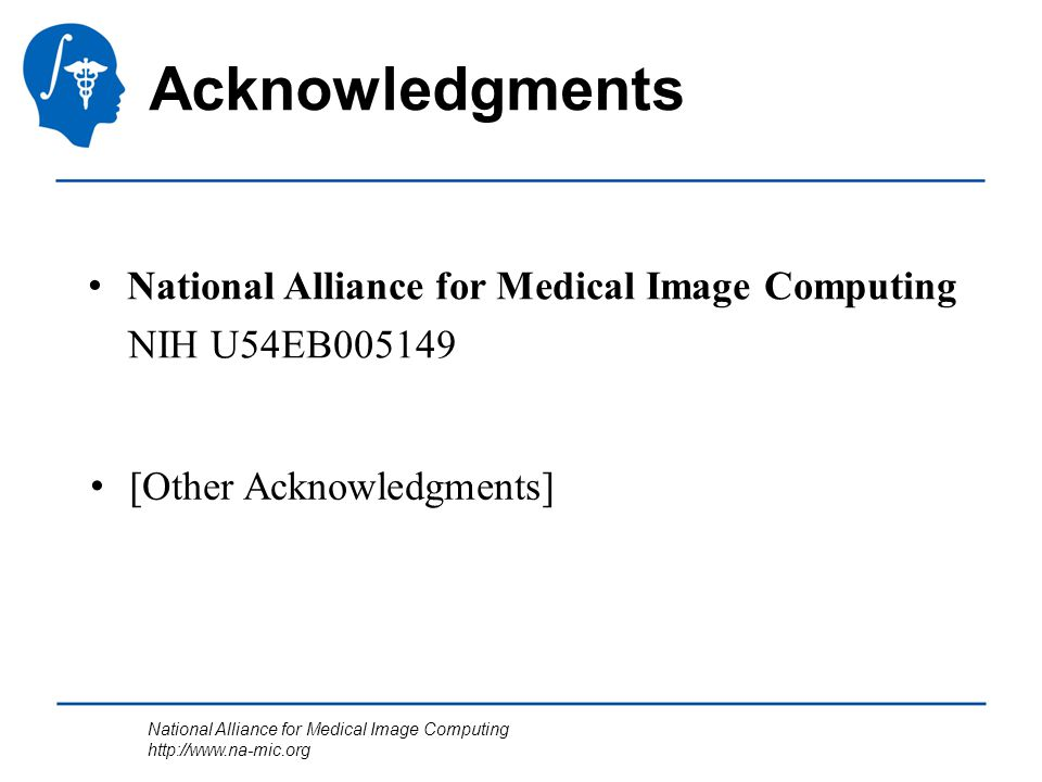 National Alliance for Medical Image Computing http://www.na-mic.org National Alliance for Medical Image Computing NIH U54EB005149 [Other Acknowledgmen