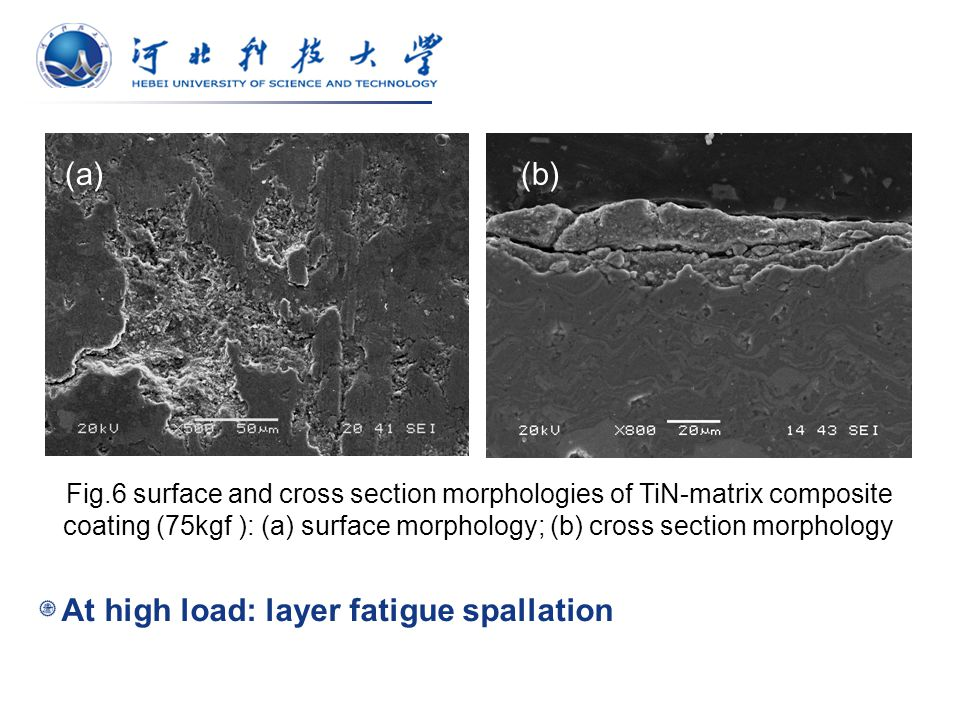 Fig.6 surface and cross section morphologies of TiN-matrix composite coating (75kgf ): (a) surface morphology; (b) cross section morphology At high load: layer fatigue spallation (a)(b)
