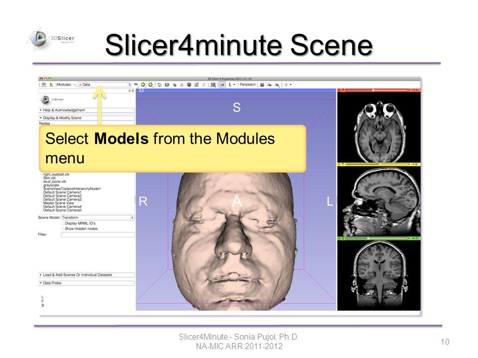 Slicer4minute Scene Slicer4Minute - Sonia Pujol, Ph.D.