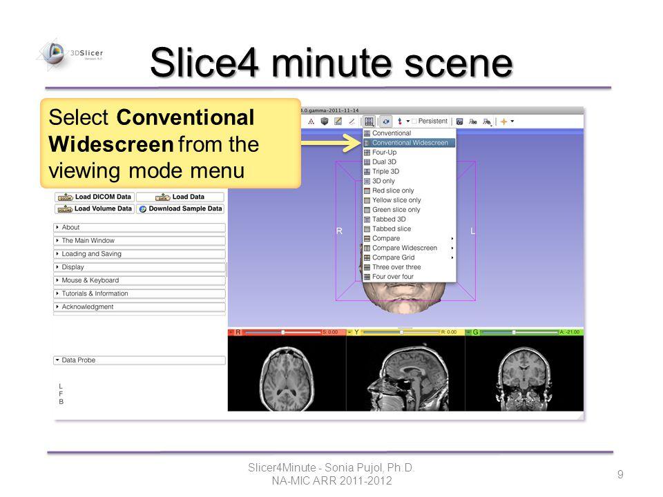 Slice4 minute scene Slicer4Minute - Sonia Pujol, Ph.D.