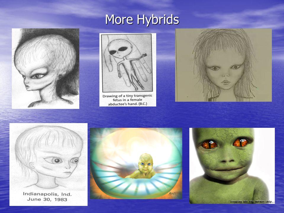 More Hybrids