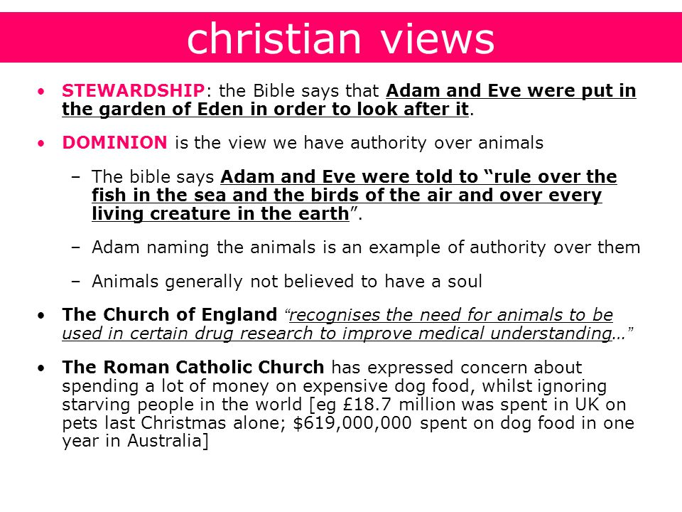 christian views STEWARDSHIP: the Bible says that Adam and Eve were put in the garden of Eden in order to look after it.