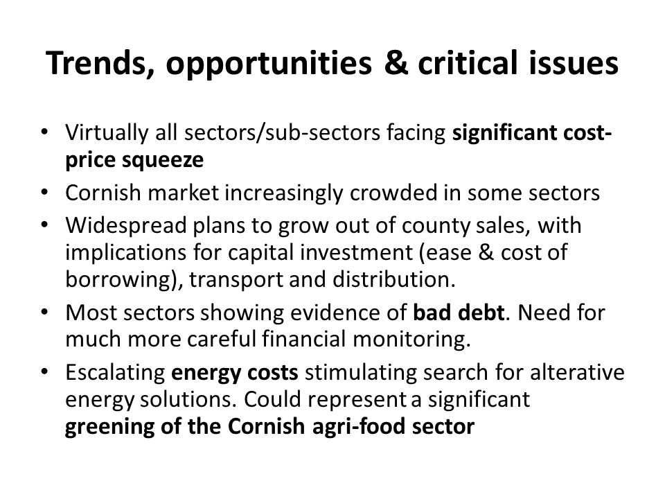 Trends, opportunities & critical issues Virtually all sectors/sub-sectors facing significant cost- price squeeze Cornish market increasingly crowded in some sectors Widespread plans to grow out of county sales, with implications for capital investment (ease & cost of borrowing), transport and distribution.