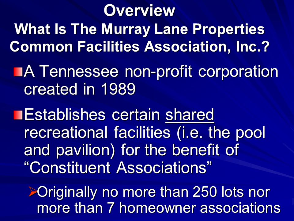 Overview Ownership & Governance Two Constituent Associations : Highland View and Waterford Owners from each neighborhood are automatically members Each Association is entitled to appoint 1 representative (President or equivalent officer) Voting is Association's allocated %