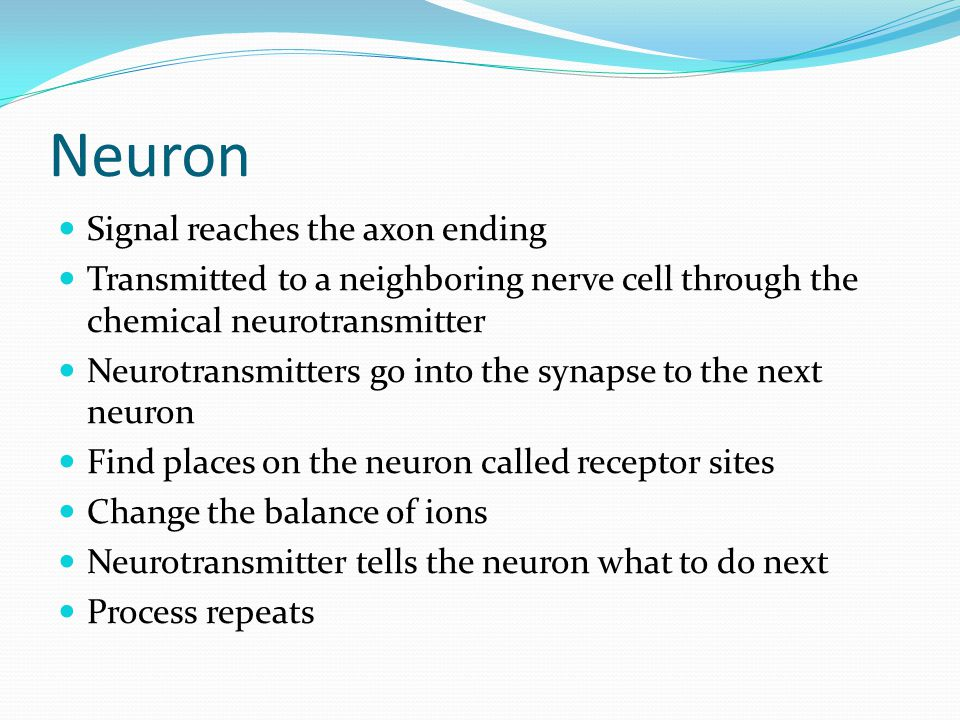 Neuron Signal reaches the axon ending Transmitted to a neighboring nerve cell through the chemical neurotransmitter Neurotransmitters go into the syna