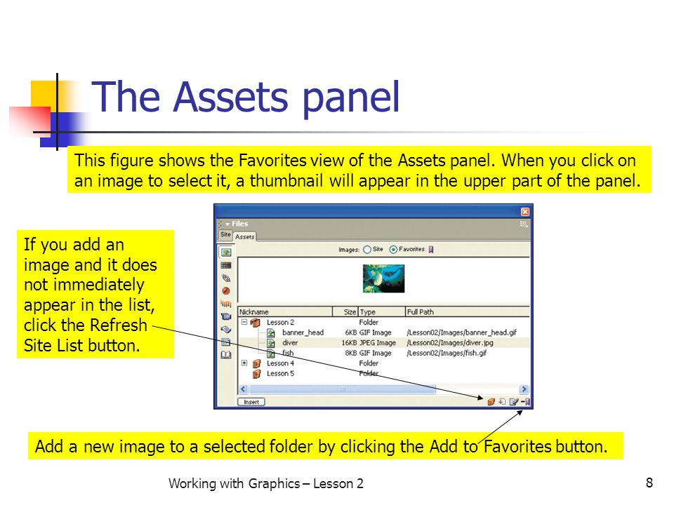 8 Working with Graphics – Lesson 2 The Assets panel This figure shows the Favorites view of the Assets panel. When you click on an image to select it,