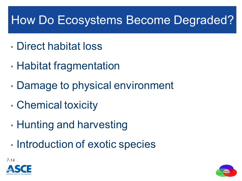 Direct habitat loss Habitat fragmentation Damage to physical environment Chemical toxicity Hunting and harvesting Introduction of exotic species How Do Ecosystems Become Degraded.