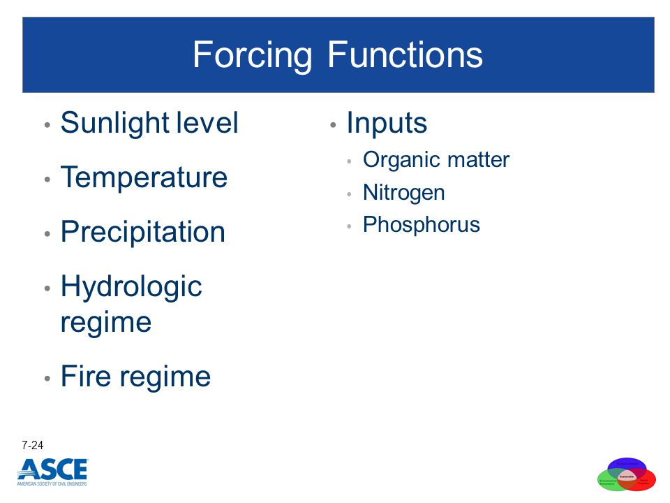 Forcing Functions Sunlight level Temperature Precipitation Hydrologic regime Fire regime Inputs Organic matter Nitrogen Phosphorus 7-24