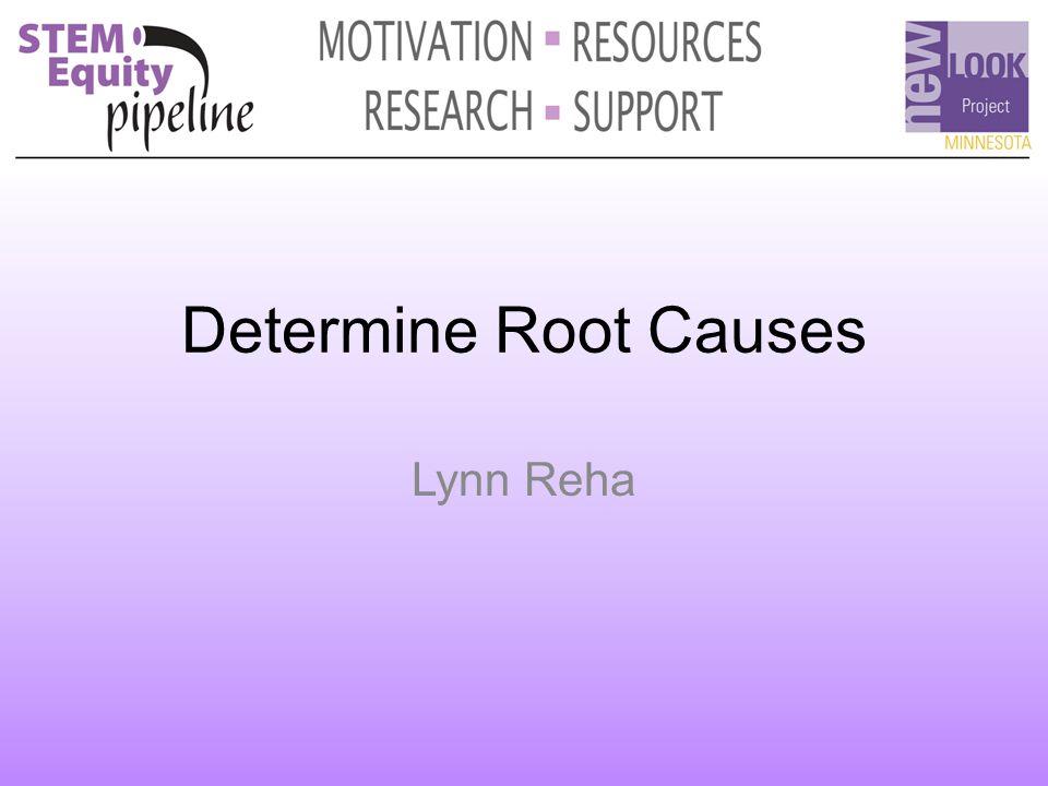 Determine Root Causes Lynn Reha