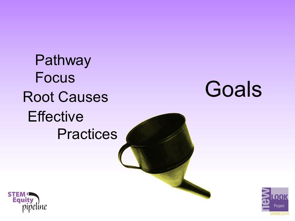 Goals Pathway Focus Root Causes Effective Practices