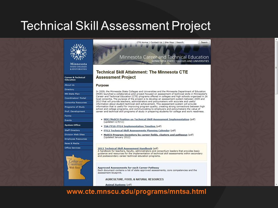 www.cte.mnscu.edu/programs/mntsa.html Technical Skill Assessment Project