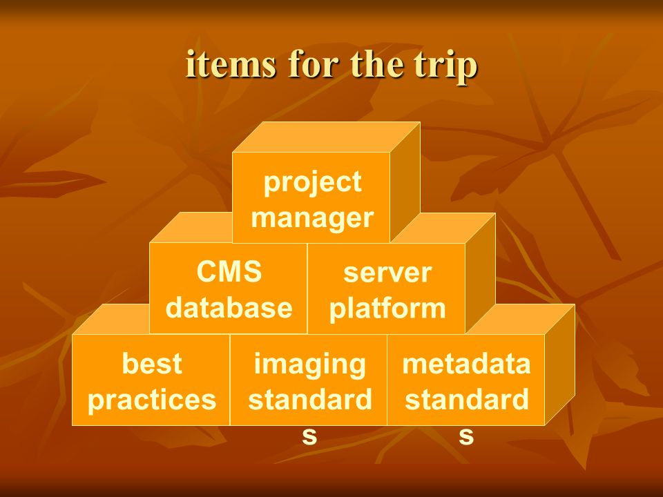 items for the trip best practices imaging standard s metadata standard s CMS database server platform project manager