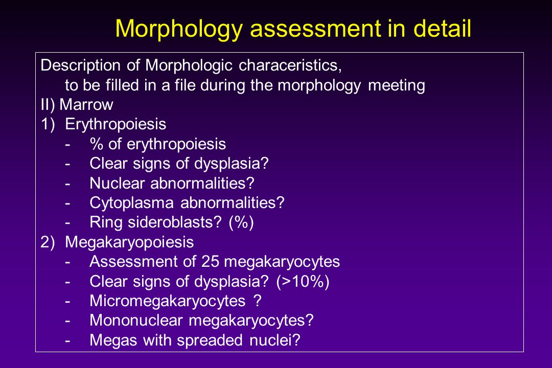 Morphology assessment in detail Description of Morphologic characeristics, to be filled in a file during the morphology meeting II) Marrow 1)Erythropo
