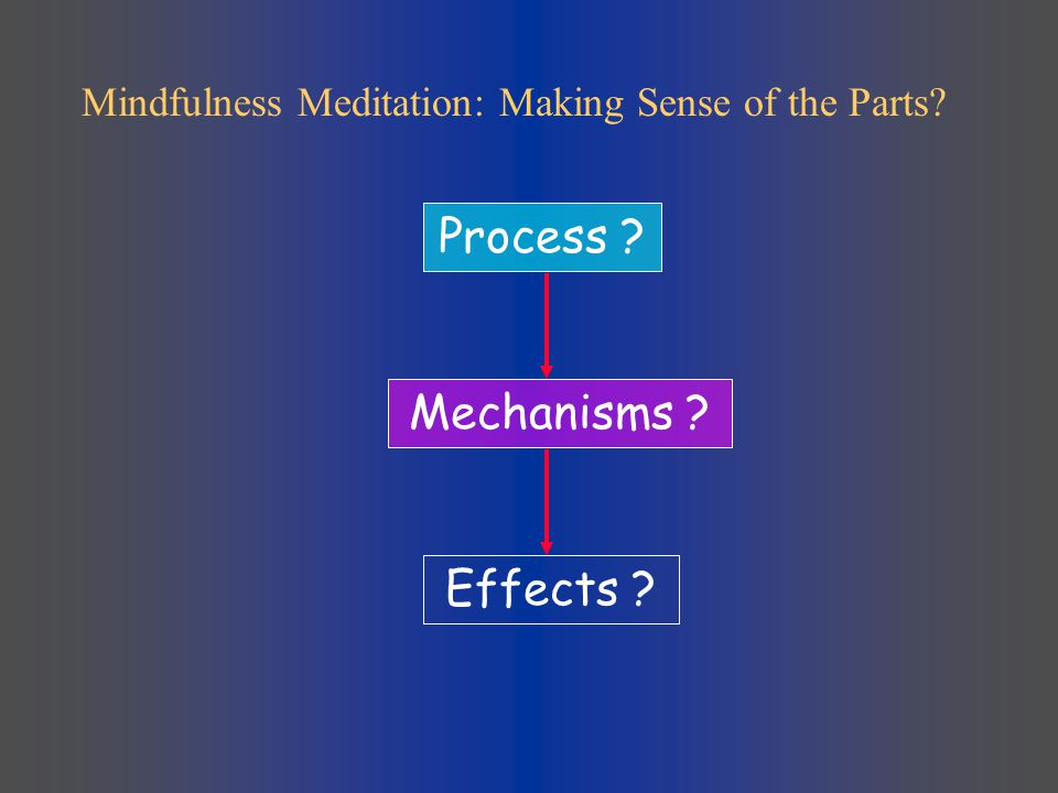 Effects ? Process ? Mechanisms ? Mindfulness Meditation: Making Sense of the Parts?