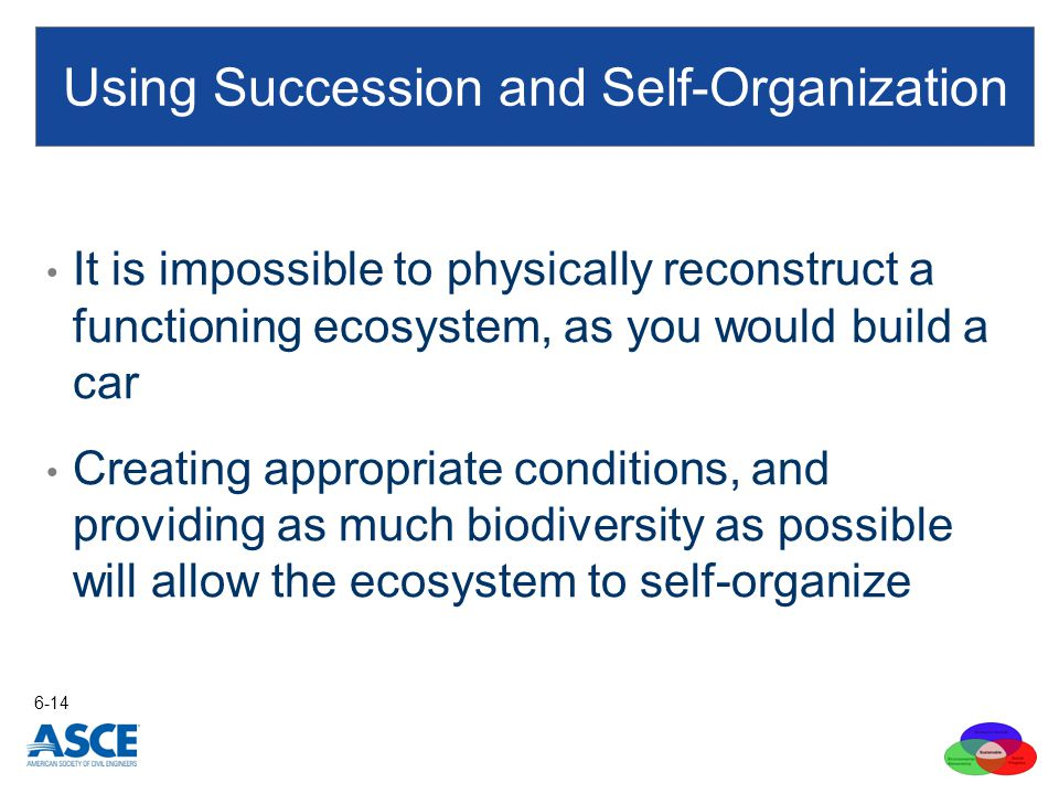 It is impossible to physically reconstruct a functioning ecosystem, as you would build a car Creating appropriate conditions, and providing as much bi