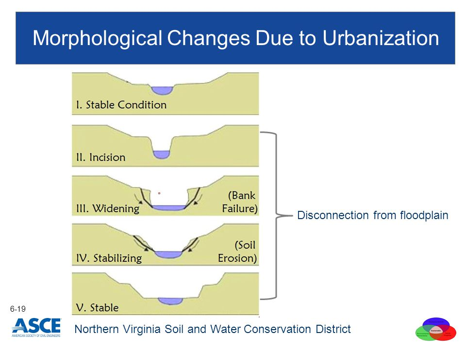Morphological Changes Due to Urbanization 6-19 Northern Virginia Soil and Water Conservation District Disconnection from floodplain