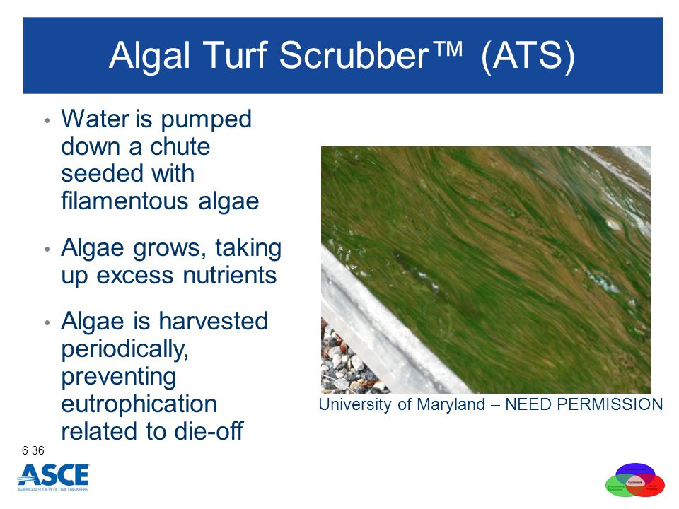 Algal Turf Scrubber™ (ATS) Water is pumped down a chute seeded with filamentous algae Algae grows, taking up excess nutrients Algae is harvested perio