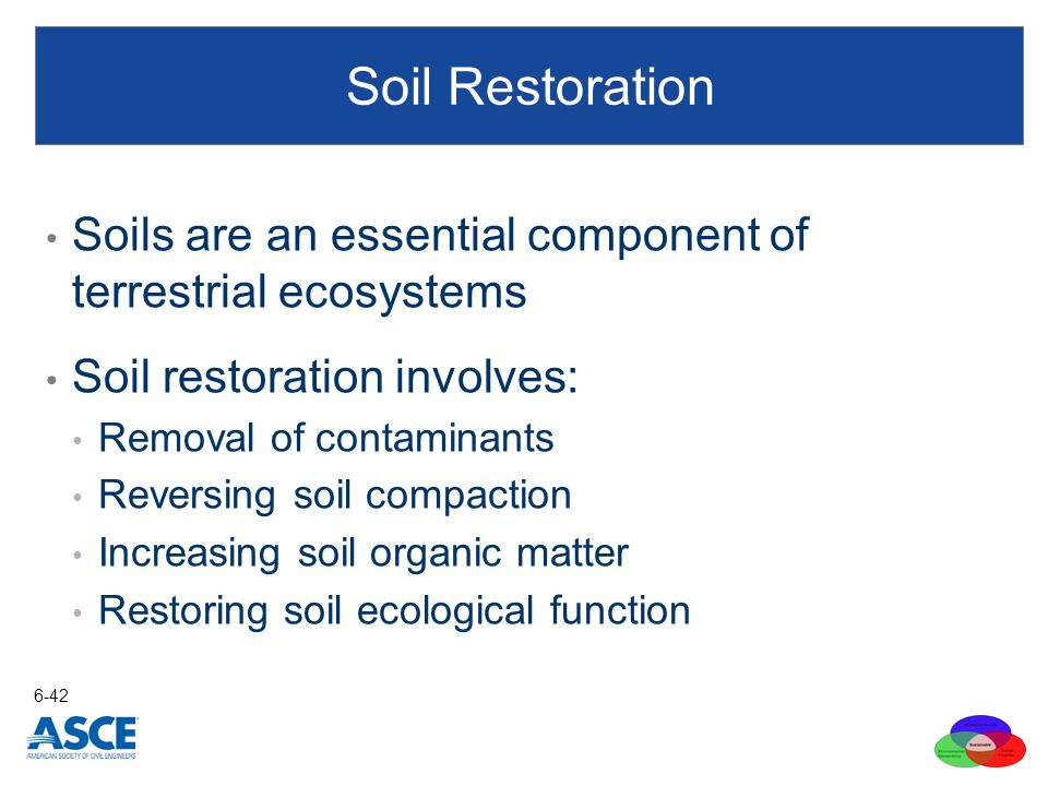 Soils are an essential component of terrestrial ecosystems Soil restoration involves: Removal of contaminants Reversing soil compaction Increasing soi