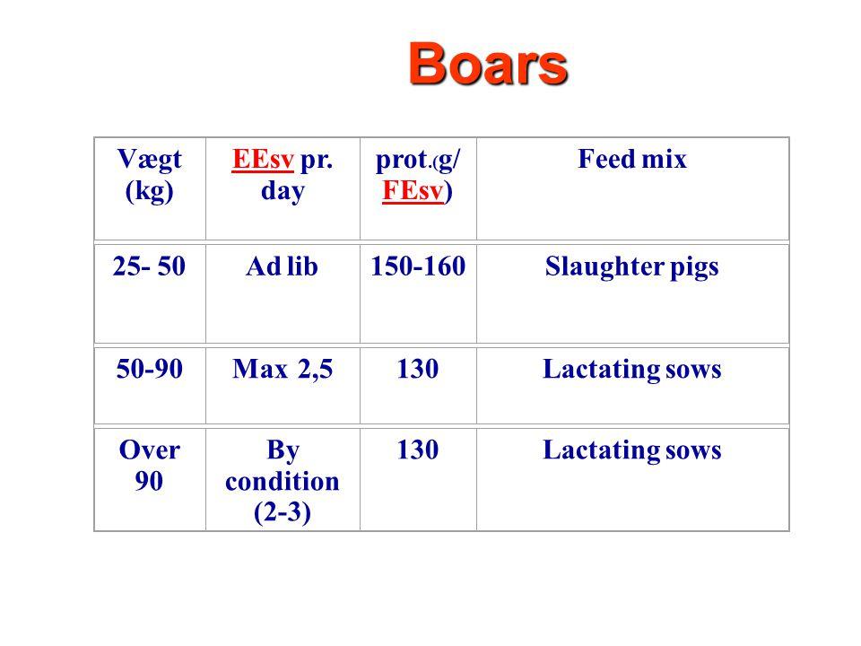 16 Boars Vægt (kg) EEsv EEsv pr.