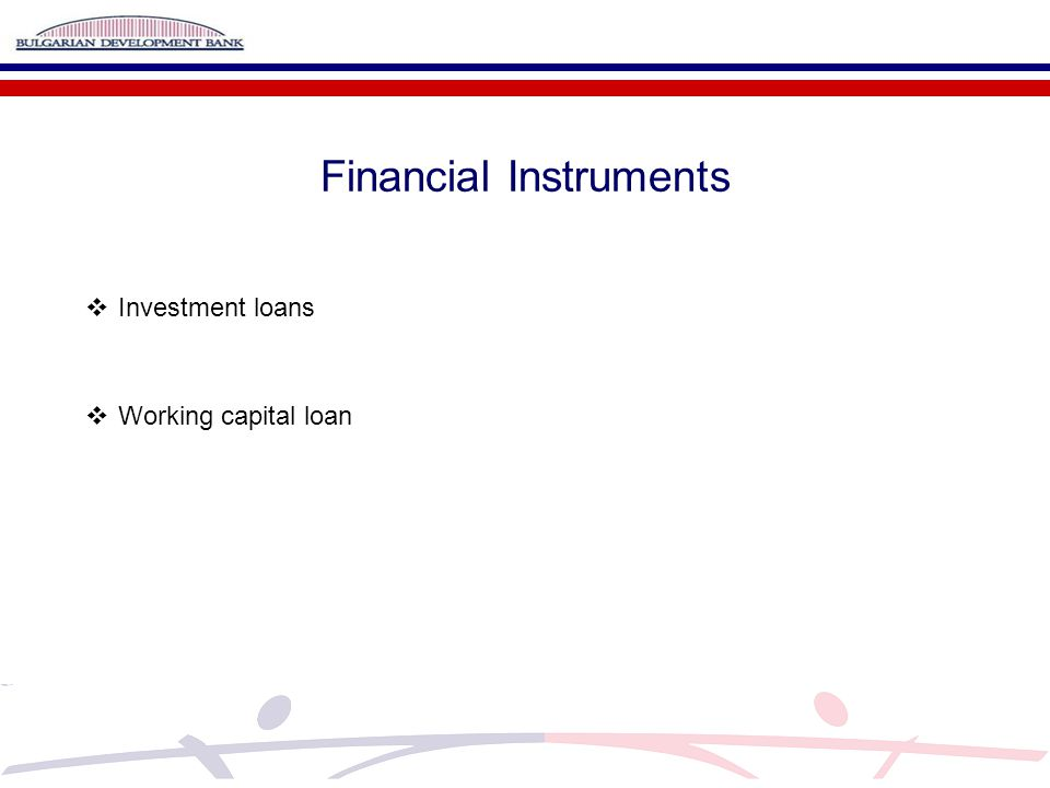 Financial Instruments  Investment loans  Working capital loan