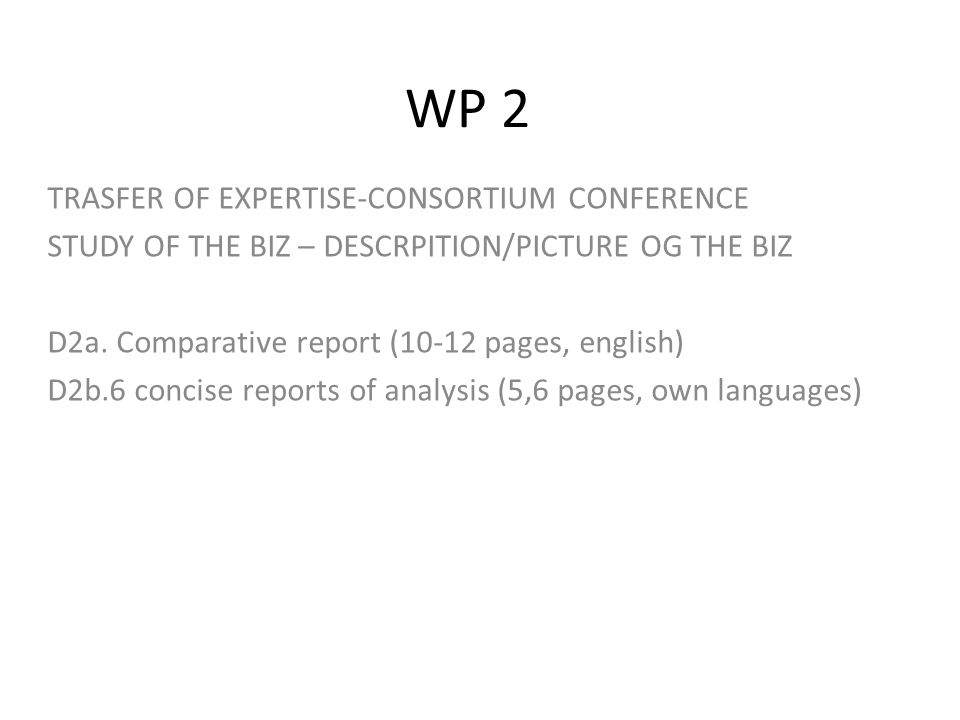 WP 2 TRASFER OF EXPERTISE-CONSORTIUM CONFERENCE STUDY OF THE BIZ – DESCRPITION/PICTURE OG THE BIZ D2a.