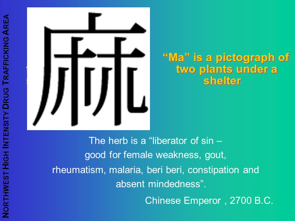 "N ORTHWEST H IGH I NTENSITY D RUG T RAFFICKING A REA ""Ma"" is a pictograph of two two plants under a shelter shelter The herb is a ""liberator of sin –"