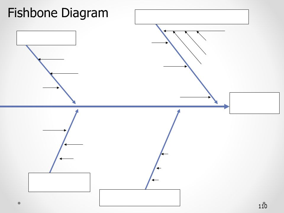 110 Fishbone Diagram