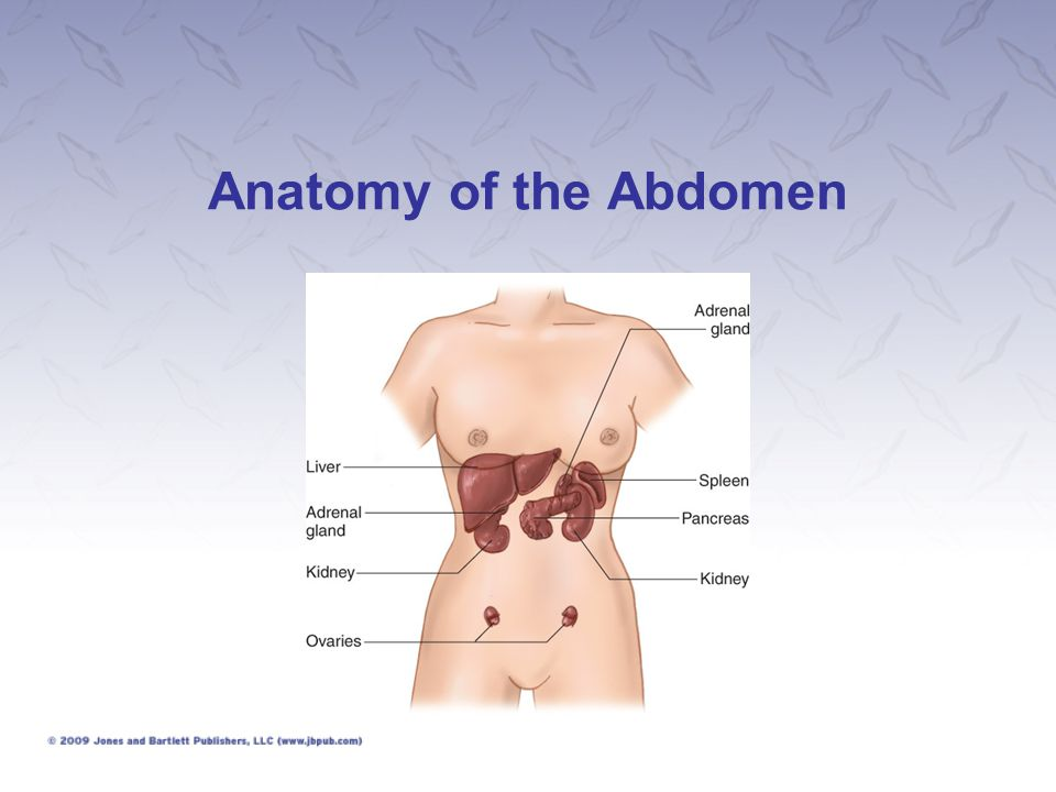 Abdominal Injuries (1 of 12) Closed: No break in skin Open: Penetration of the peritoneal cavity Both open and closed injuries can cause internal bleeding or leakage of intestinal contents that cause irritation and infection.