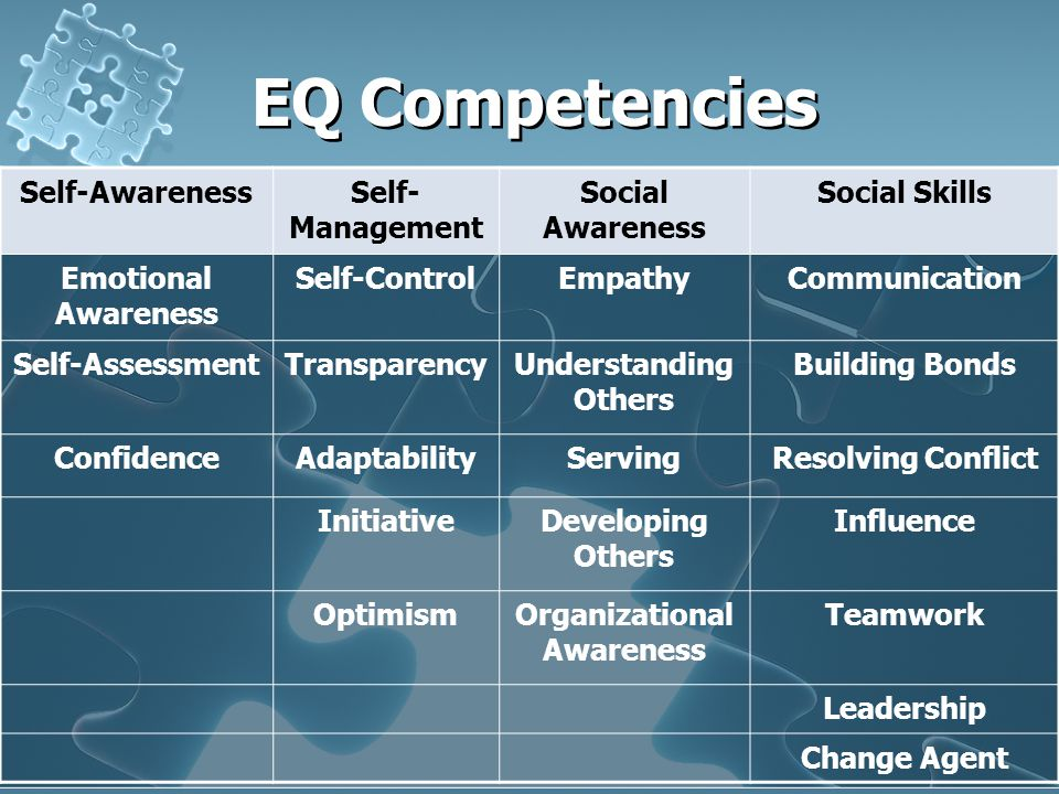 EQ Competencies Self-AwarenessSelf- Management Social Awareness Social Skills Emotional Awareness Self-ControlEmpathyCommunication Self-AssessmentTransparencyUnderstanding Others Building Bonds ConfidenceAdaptabilityServingResolving Conflict InitiativeDeveloping Others Influence OptimismOrganizational Awareness Teamwork Leadership Change Agent