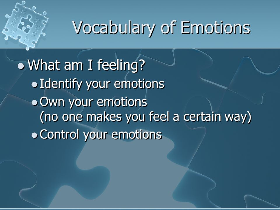 Vocabulary of Emotions What am I feeling.