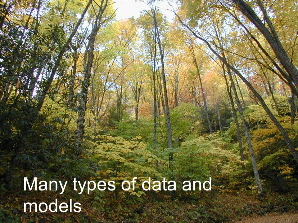 Many types of data and models
