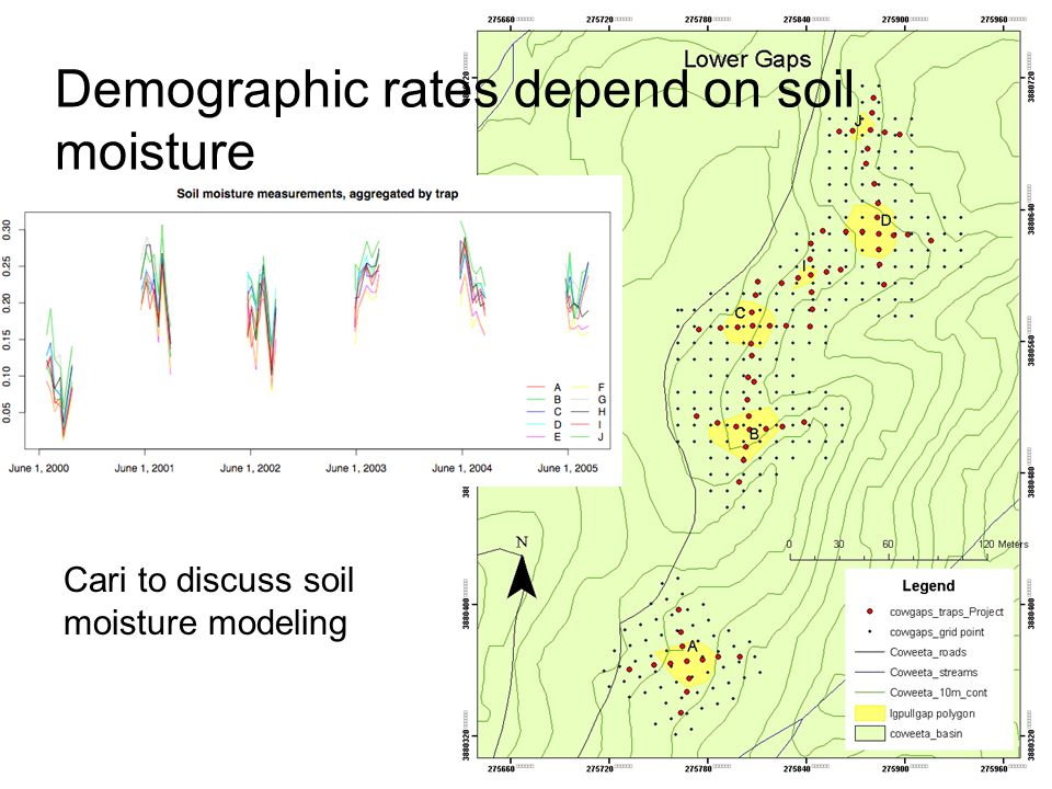 Demographic rates depend on soil moisture Cari to discuss soil moisture modeling