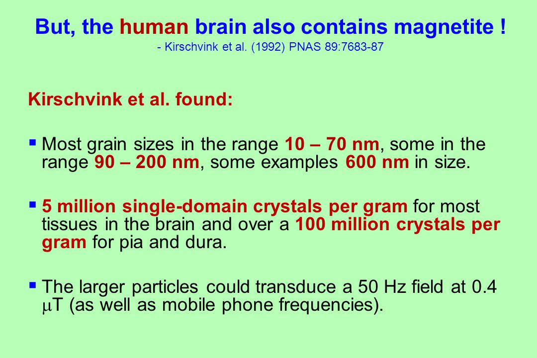 But, the human brain also contains magnetite . - Kirschvink et al.