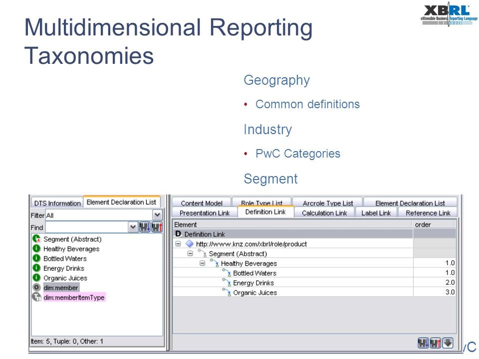PwC Multidimensional Reporting Taxonomies Geography Common definitions Industry PwC Categories Segment Company specific