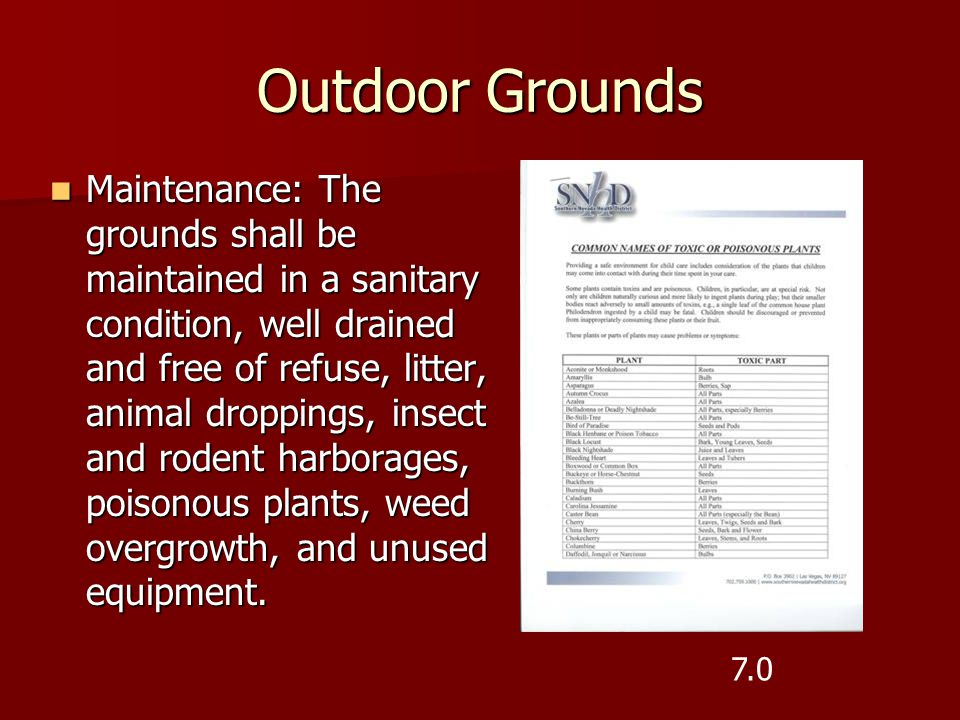 Outdoor Grounds Maintenance: The grounds shall be maintained in a sanitary condition, well drained and free of refuse, litter, animal droppings, insec