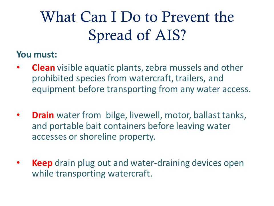 What Can I Do to Prevent the Spread of AIS.