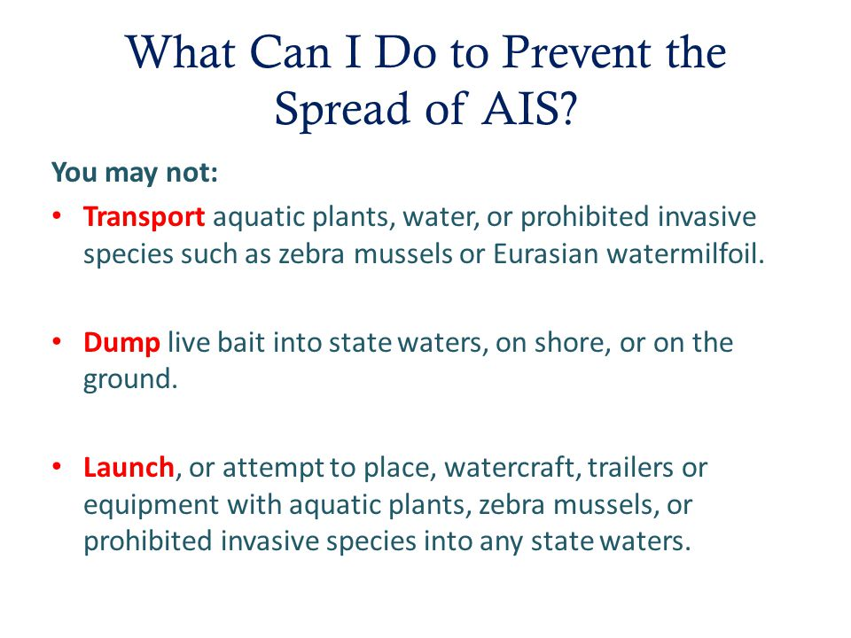 AIS · Aquatic Invasive Species Education for Otter Tail County