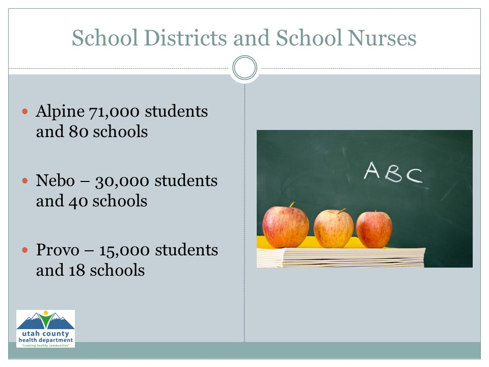 School Districts and School Nurses Alpine 71,000 students and 80 schools Nebo – 30,000 students and 40 schools Provo – 15,000 students and 18 schools