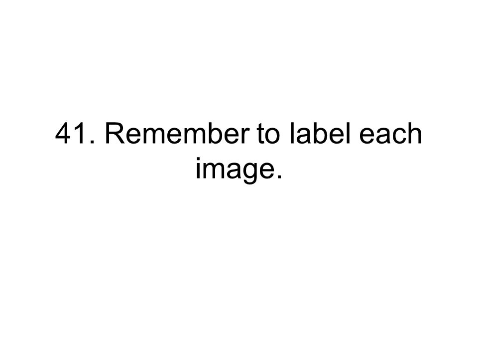 41. Remember to label each image.