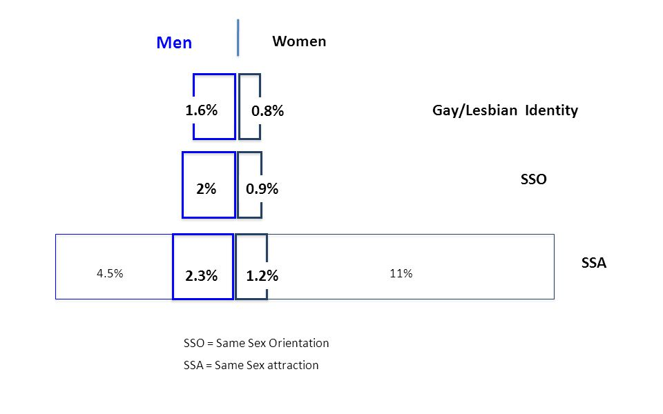 Women Men 11% 1.2%2.3% 4.5% 2%0.9% 0.8% 1.6% SSA SSO Gay/Lesbian Identity SSO = Same Sex Orientation SSA = Same Sex attraction