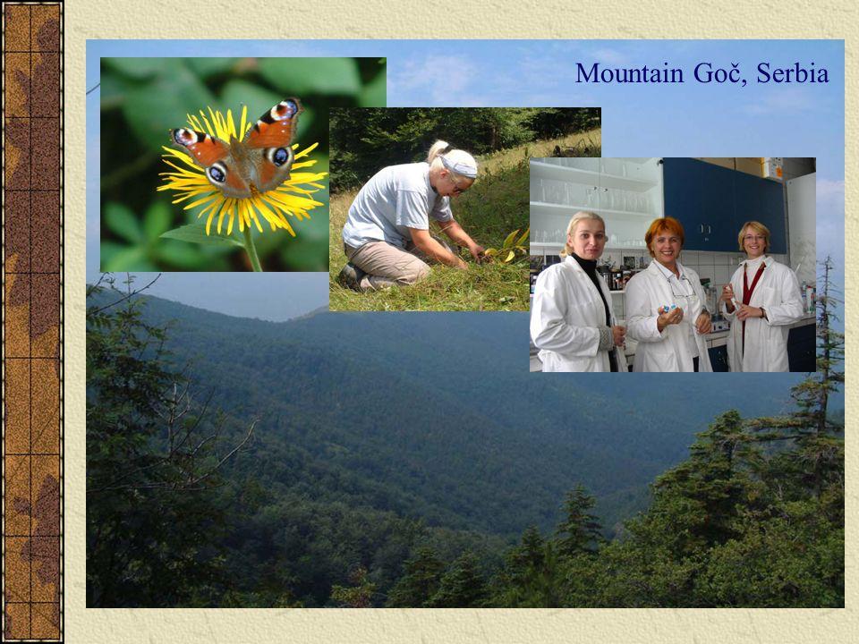Mountain Goč, Serbia