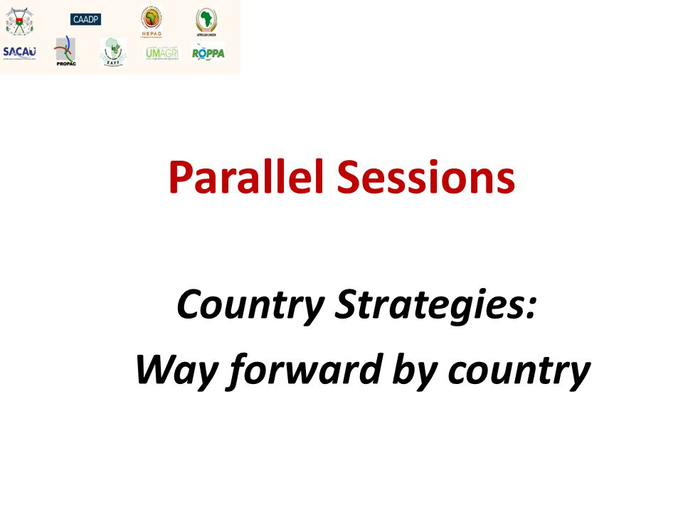 Parallel Sessions Country Strategies: Way forward by country