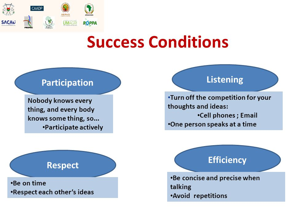 Success Conditions Listening Turn off the competition for your thoughts and ideas: Cell phones ; Email One person speaks at a time Efficiency Be concise and precise when talking Avoid repetitions Respect Be on time Respect each other's ideas Participation Nobody knows every thing, and every body knows some thing, so...